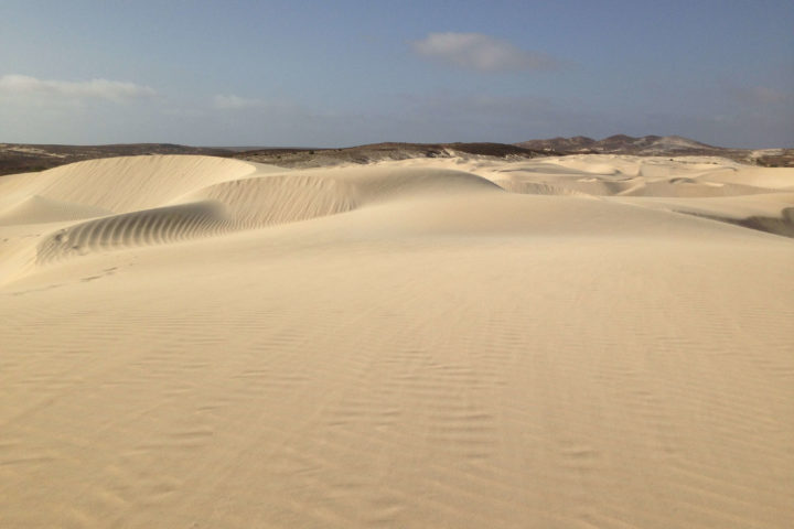 viana wuste boa vista desert